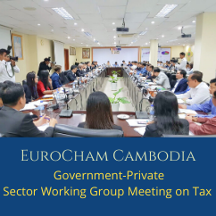 Government-Private Sector Working Group Meeting on Tax